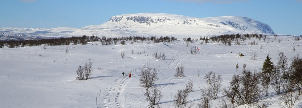 slider-ski_opt